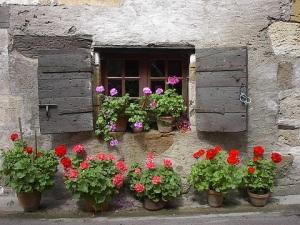 Window box in the Dordogne
